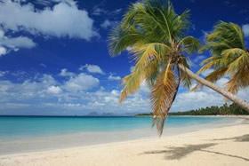 Spiaggia in Martinica