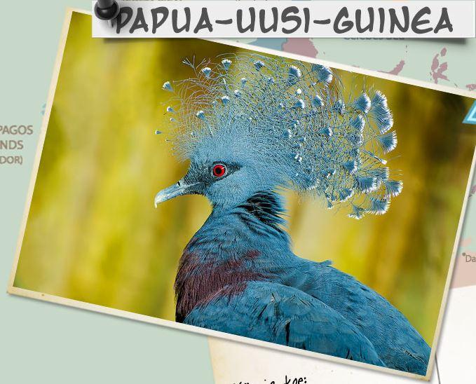 Papua-Uusi-Guinea