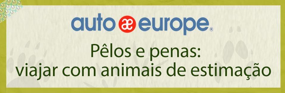 Infográfico: Viajar com animais de estimação