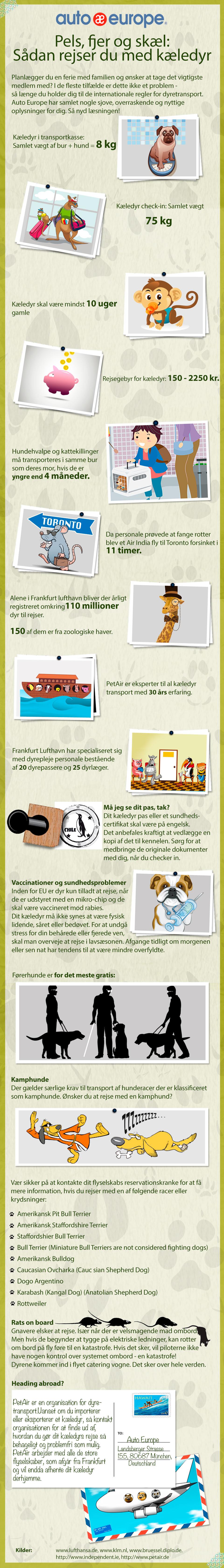 Rejs med dyr infographic