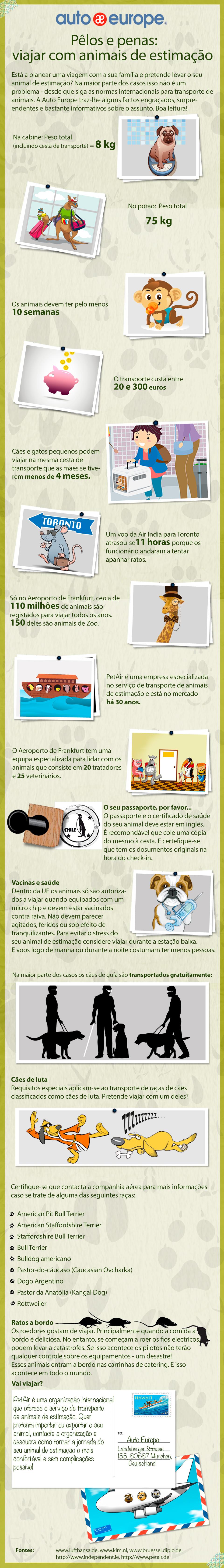 Inforgráfico: Viajar com animais de estimação