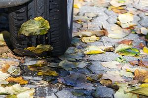 Autonoleggio in autunno