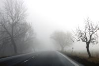 Vorsicht beim Autofahren im Herbst