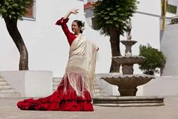 Mit dem Mietwagen zum Flamenco