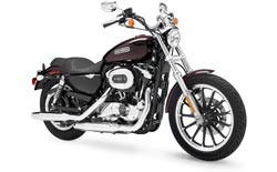 Car Hire CHICAGO  Harley Sportster