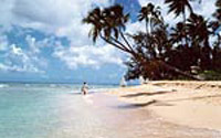 Biludlejning Barbados