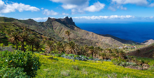 Car hire in La Gomera