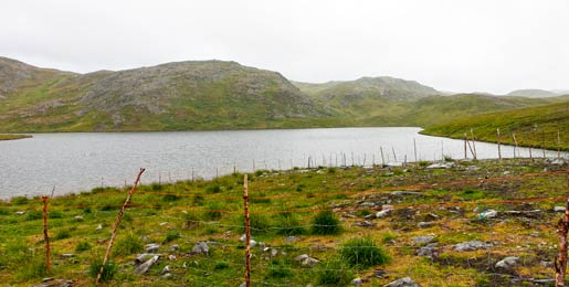 Leiebil i Kirkenes