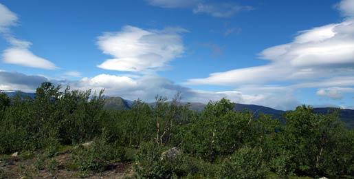 Hyrbil i Kiruna