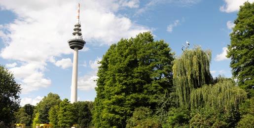 Alquiler de Autos en Mannheim