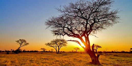 Mietwagen Simbabwe