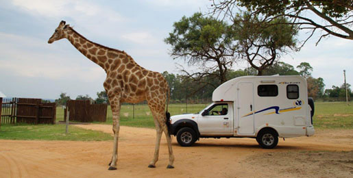 Campervan 4x4 hire in Botswana