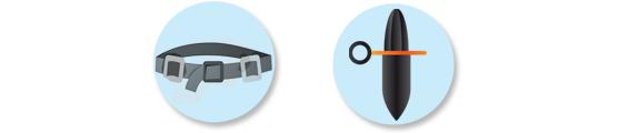 Equipment - Wight belt and presuure gauge