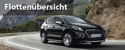Peugeot Leasing Flottenübersicht