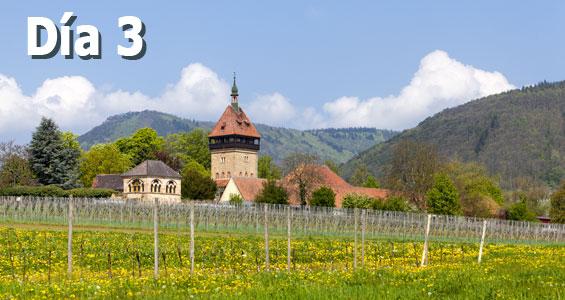 Road trip Ruta del vino alemán, día 3