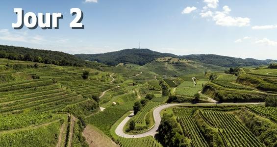 Road trip la route des vins allemande, jour 2