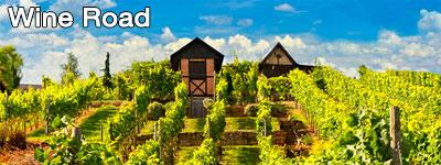 Saksan kiertomatka - Viinireitti
