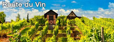 Road Trip en Allemagne- Route des vins