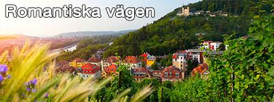Vinkullar ovanför Würzburg med slottet i bakgrunden