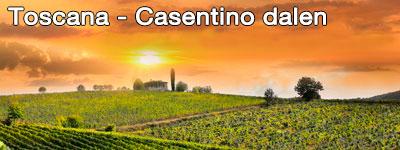 Road Trip Toscana