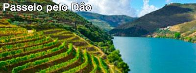 Região do Dão - Road Trip Portugal