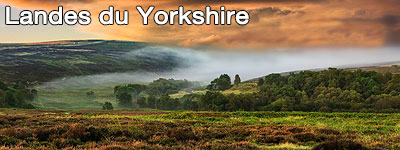 Road trip en Yorkshire du Nord