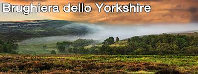 Road Trip Brughiera dello Yorkshire