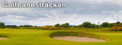 Två sandbunkrar på en golfbana