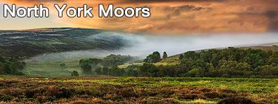 Vackert landskap med fält, berg och gröna ängar i Yorkshire Moors