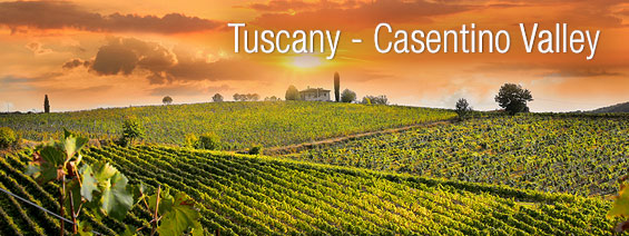 Tuscany Road Trip and Cesentino Valley